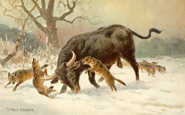 Depiction of an Aurochs.