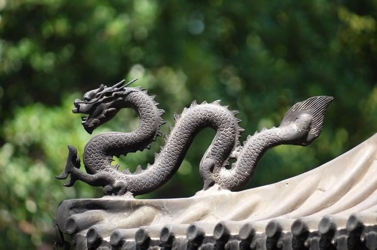 Chinese dragon - symbol of strength.